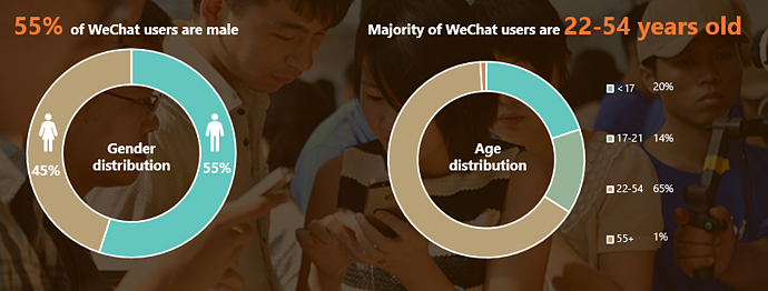 WeChat user demographic